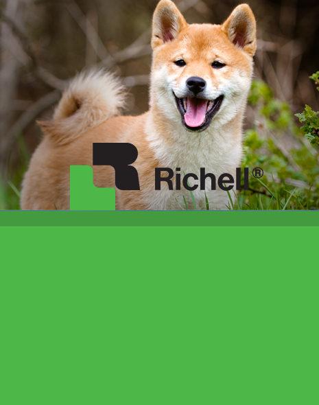 rich-card