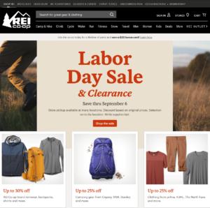 Screen Shot Of Well Designed E-Commerce Site